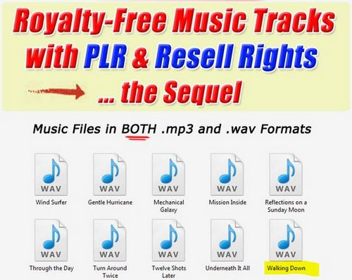 Product picture 1 Professional Quality Music tracks -Walking Down.wav